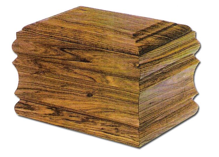 urna-b2